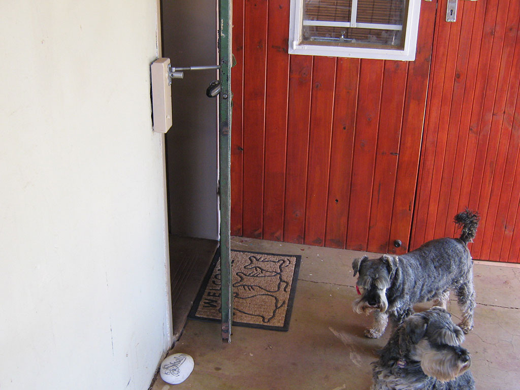 Cat flap or dog door alternative locklatch - Exterior door with pet door installed ...