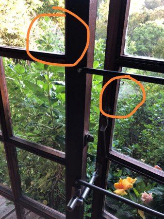 door and window security